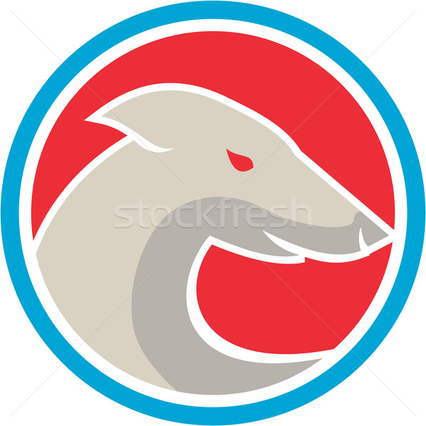 Greyhound Dog Head Side Circle Retro Stock photo © patrimonio