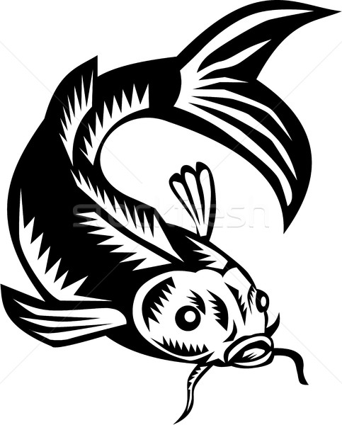 Koi Nishikigoi Carp Fish Woodcut Stock photo © patrimonio