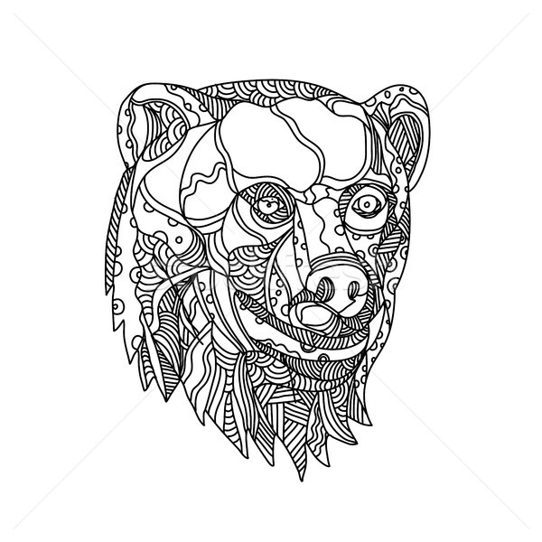 Brown Bear Head Doodle Stock photo © patrimonio