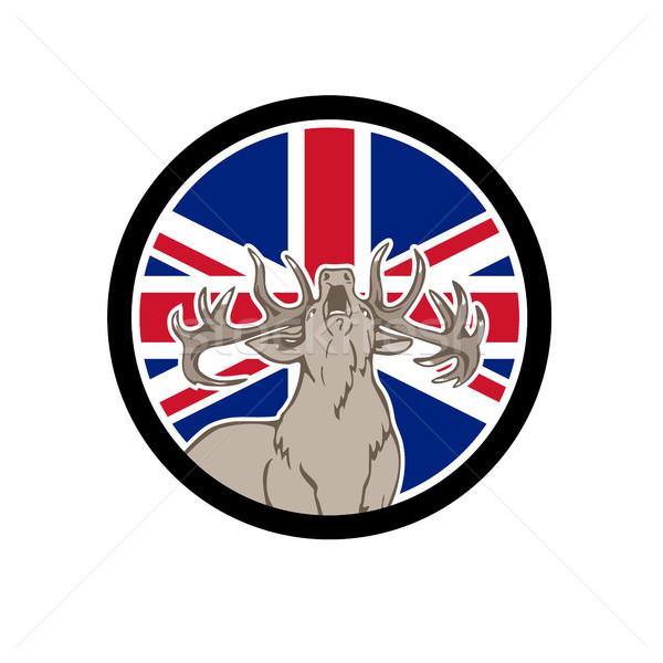 Kırmızı geyik İngiliz bayrağı bayrak ikon retro tarzı Stok fotoğraf © patrimonio
