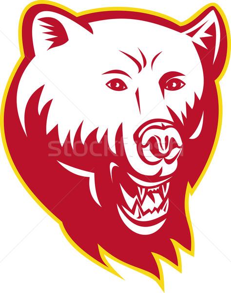 Mérges grizzly medve fej illusztráció szemben elöl Stock fotó © patrimonio