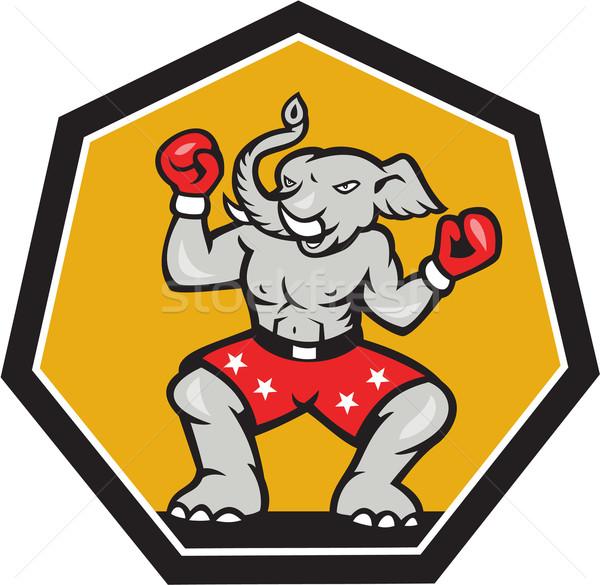 Elefánt kabala boxoló rajz illusztráció republikánus Stock fotó © patrimonio