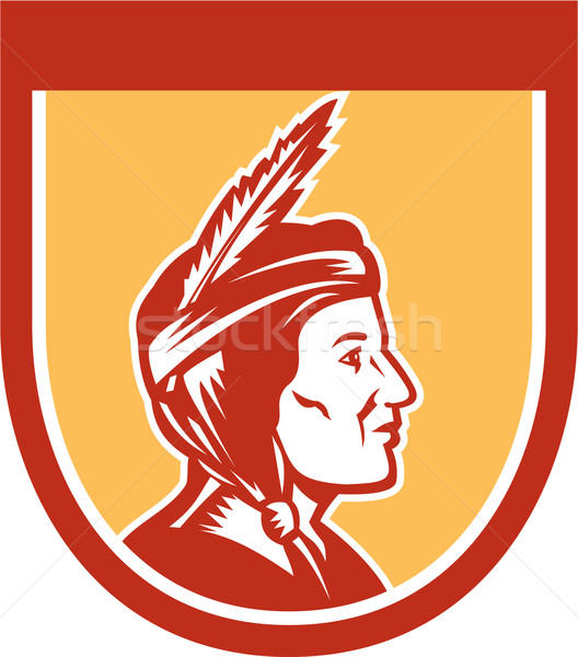 Native American Indian Chief Shield Retro Stock photo © patrimonio
