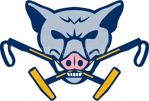 Wild Hog Head Crossed Polo Mallet Retro Stock photo © patrimonio