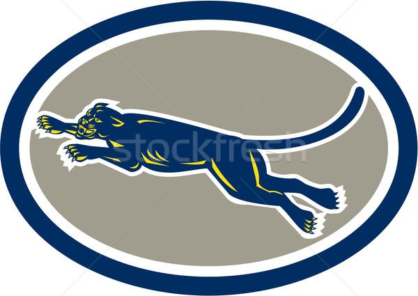 Black Panther Leaping Oval retro Stock photo © patrimonio