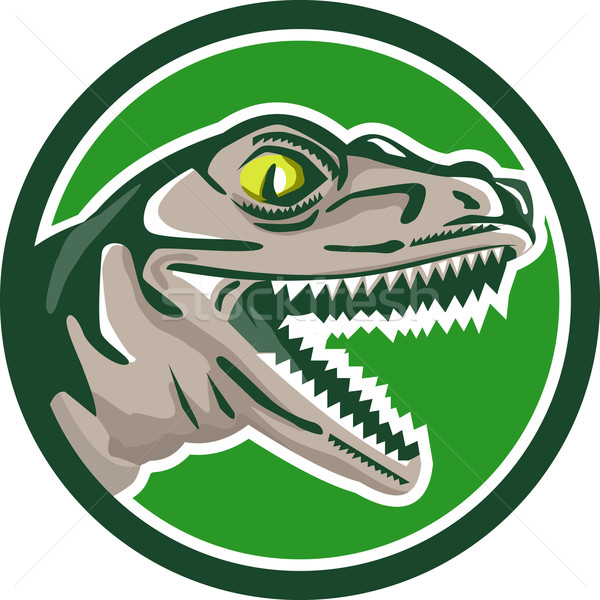 Raptor Head Side Circle Retro Stock photo © patrimonio