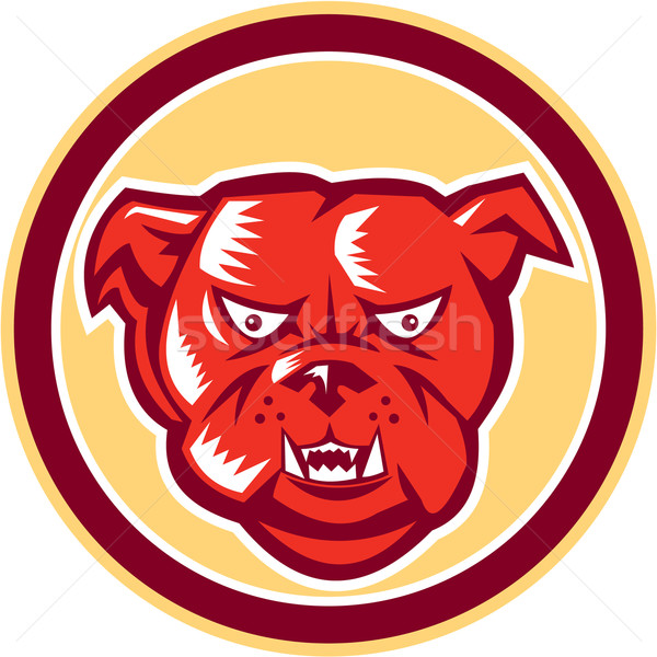 Angry Bulldog Mongrel Head Circle Retro Stock photo © patrimonio
