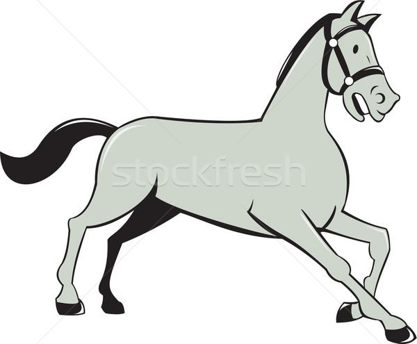 Horse Trotting Side Cartoon Isolated Stock photo © patrimonio