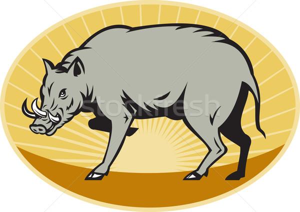 babirusa wild pig attack Stock photo © patrimonio