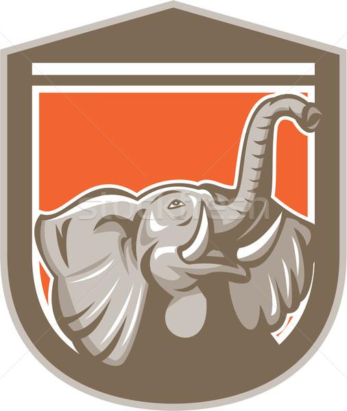 Elephant Head Looking Up Shield Retro Stock photo © patrimonio