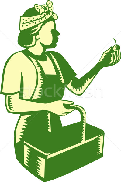 Female Fruit Picker Worker Basket Woodcut Stock photo © patrimonio
