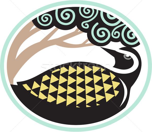 Golden Plover Looking Up Tree Oval Tribal Art Stock photo © patrimonio