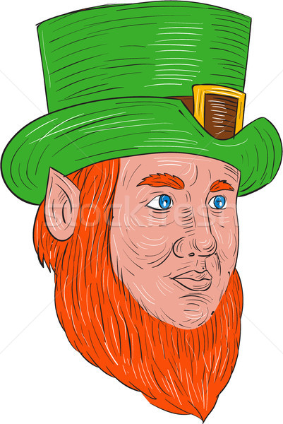 Leprechaun Head Three Quarter View Drawing Stock photo © patrimonio