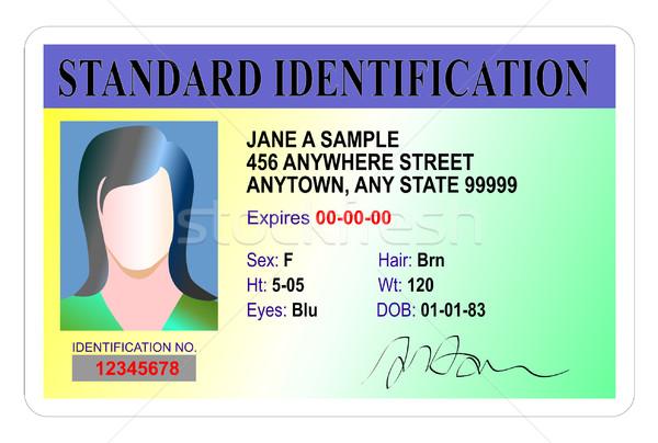 Femenino estándar identificación tarjeta ilustración aislado Foto stock © patrimonio