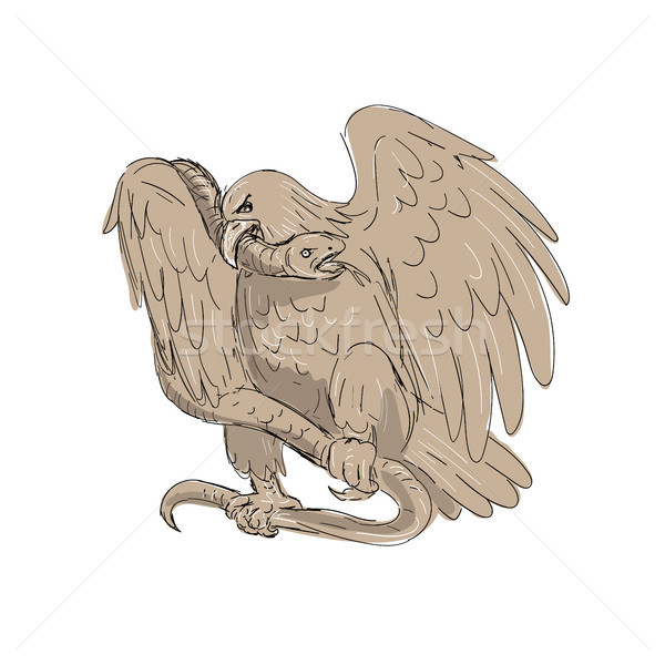 Serpent in Clutches of Eagle Drawing Stock photo © patrimonio