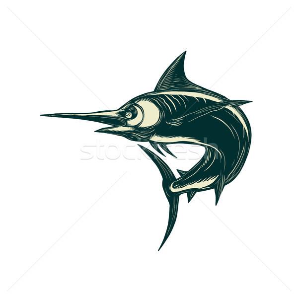 Atlantic Blue Marlin Scraperboard  Stock photo © patrimonio