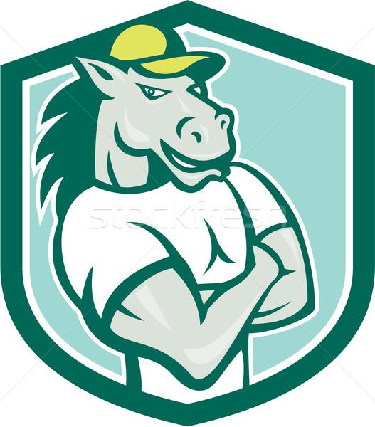 Horse Arms Crossed Shield Cartoon Stock photo © patrimonio