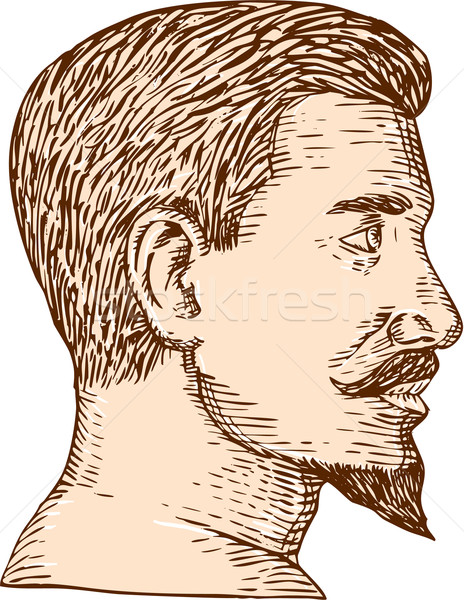 Male Goatee Side View Etching Stock photo © patrimonio