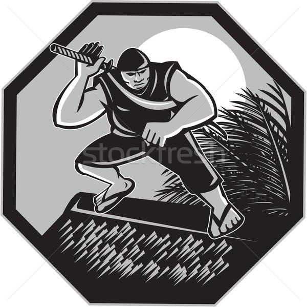 Ninja topo cabana retro ilustração samurai Foto stock © patrimonio