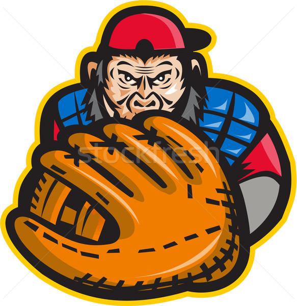 şempanze beysbol eldiven Retro örnek beyzbol oyuncusu Stok fotoğraf © patrimonio