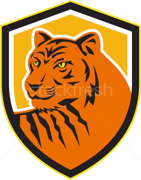 Tiger Head Front Crest Retro Stock photo © patrimonio