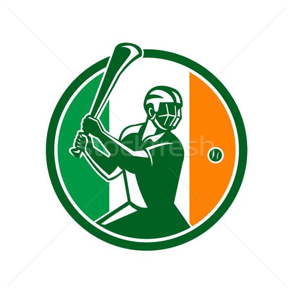 アイルランド フラグ アイコン レトロスタイル 実例 選手 ストックフォト © patrimonio