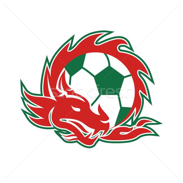 Welsh Dragon Soccer Ball  Stock photo © patrimonio