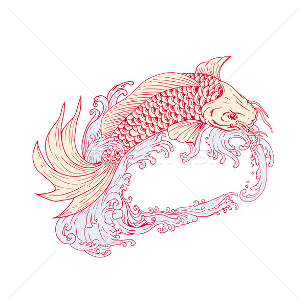 Koi springen golven tekening schets stijl Stockfoto © patrimonio