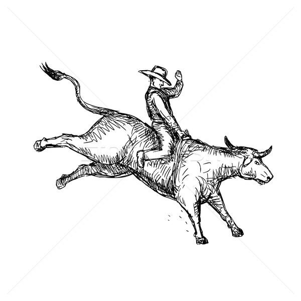 牛 ライディング ロデオ カウボーイ 図面 スケッチ ストックフォト © patrimonio