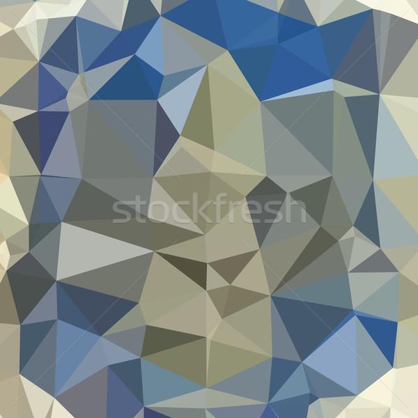 ヤグルマギク 青 抽象的な 低い ポリゴン スタイル ストックフォト © patrimonio