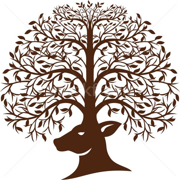 Veado cabeça árvore galhada retro ilustração Foto stock © patrimonio