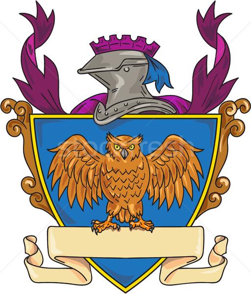 Owl Wings Spread Knight Helmet Drawing Stock photo © patrimonio
