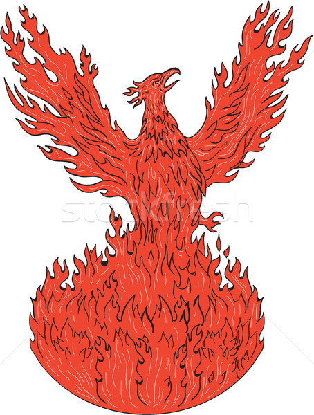 Phoenix Rising Fiery Flames Drawing Stock photo © patrimonio
