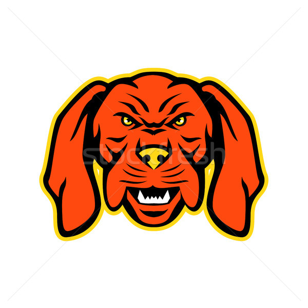 Húngaro cão mascote zangado ícone ilustração Foto stock © patrimonio