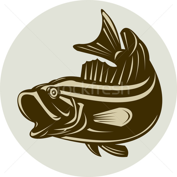 largemouth bass jumping Stock photo © patrimonio