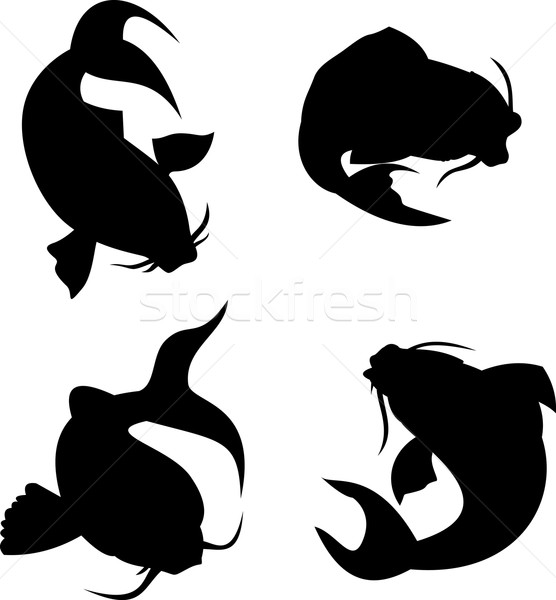Koi karper silhouet illustratie ingesteld witte Stockfoto © patrimonio