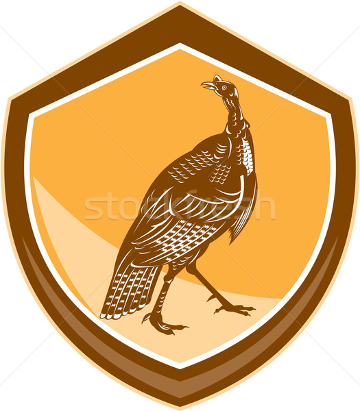 Turkey Walking Shield Retro Stock photo © patrimonio