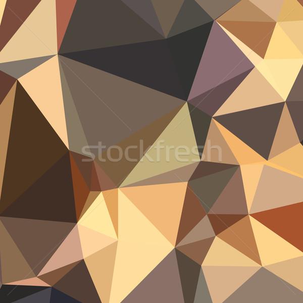 Bole Brown Abstract Low Polygon Background Stock photo © patrimonio