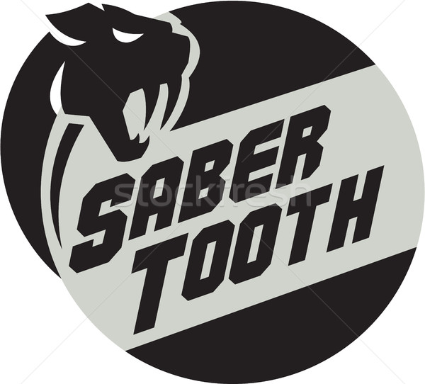Saber Tooth Tiger Cat Head Circle Retro Stock photo © patrimonio