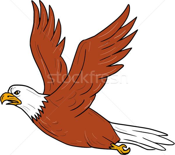 Böse Adler unter Karikatur Illustration Flügel Stock foto © patrimonio