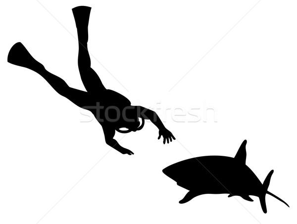 Búvár cápa sziluett illusztráció úszik izolált Stock fotó © patrimonio
