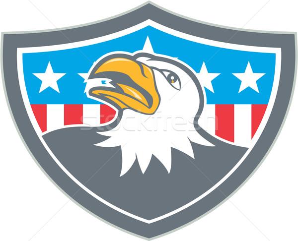 американский лысые орел голову флаг щит Сток-фото © patrimonio