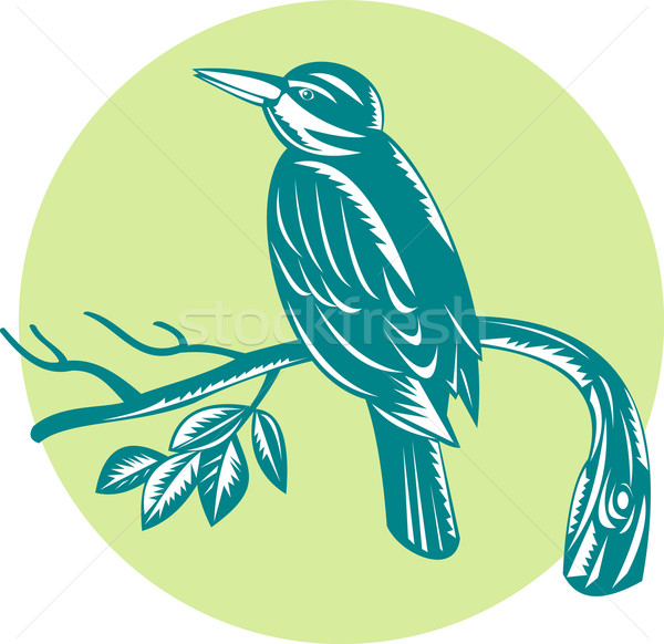 Kingfisher Perching On Branch Woodcut Stock photo © patrimonio