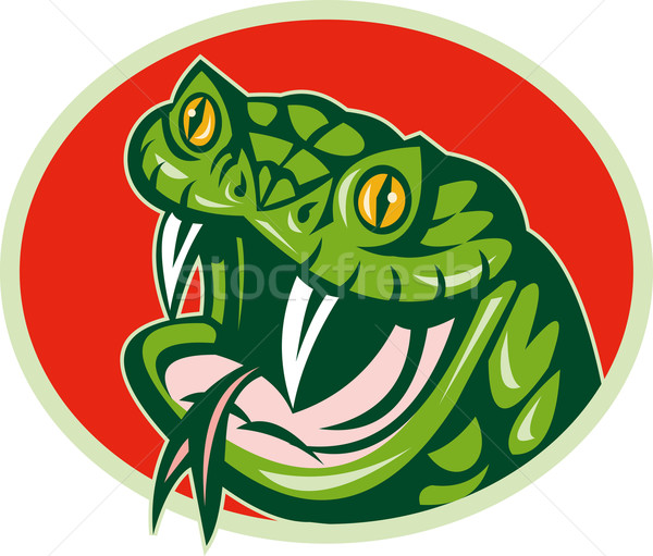 Kígyó illusztráció szett bent Stock fotó © patrimonio