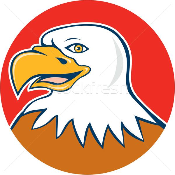 Americano careca Águia cabeça sorridente círculo Foto stock © patrimonio