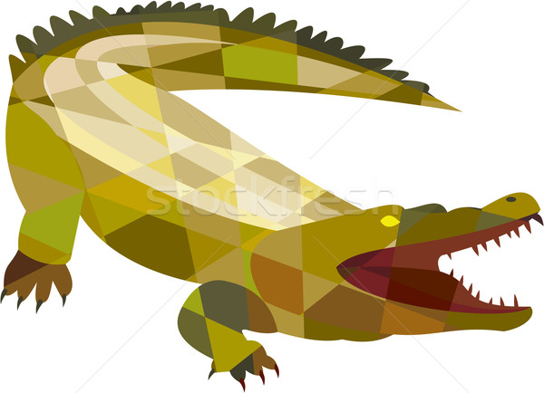 Alligator Crocodile Gaping Mouth Low Polygon Stock photo © patrimonio