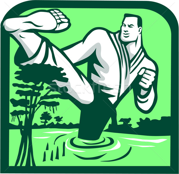 Martial Arts Fighter Kicking Cypress Tree Retro Stock photo © patrimonio