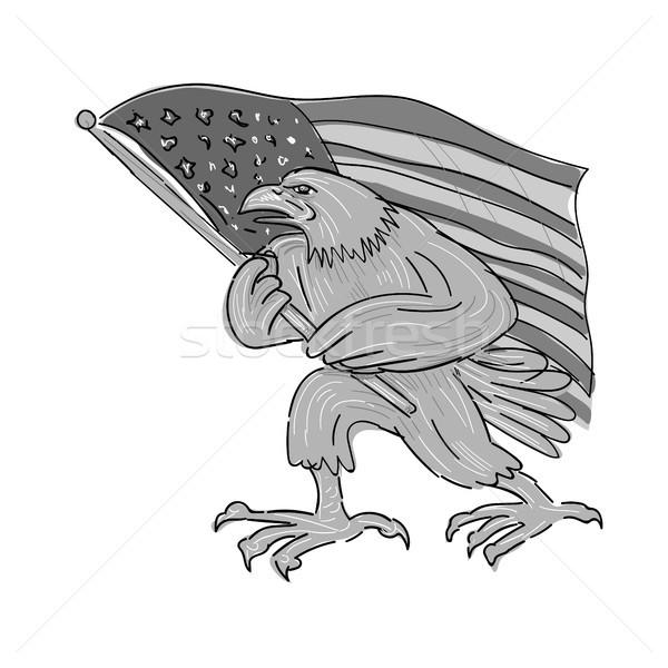 American Eagle Waving USA Flag Cartoon Stock photo © patrimonio