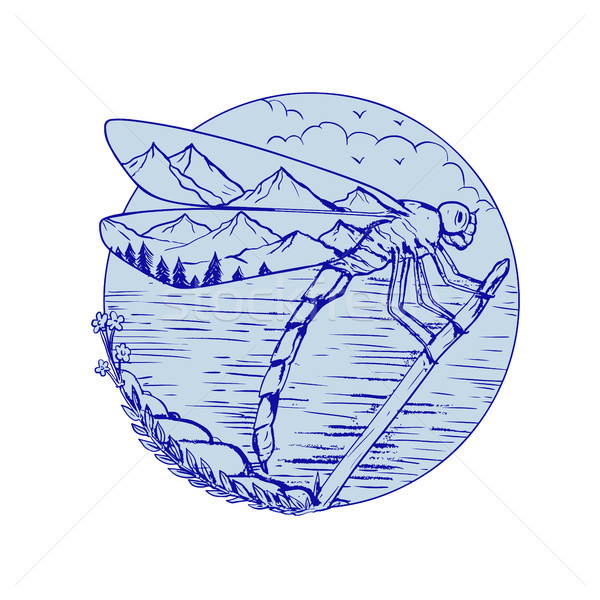 Dragonfly Mountains In Wings Drawing Stock photo © patrimonio