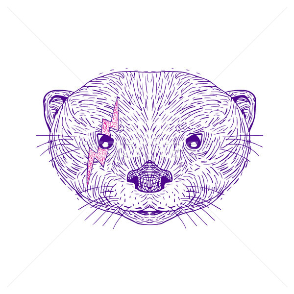 Otter Head Lightning Bolt Drawing Stock photo © patrimonio